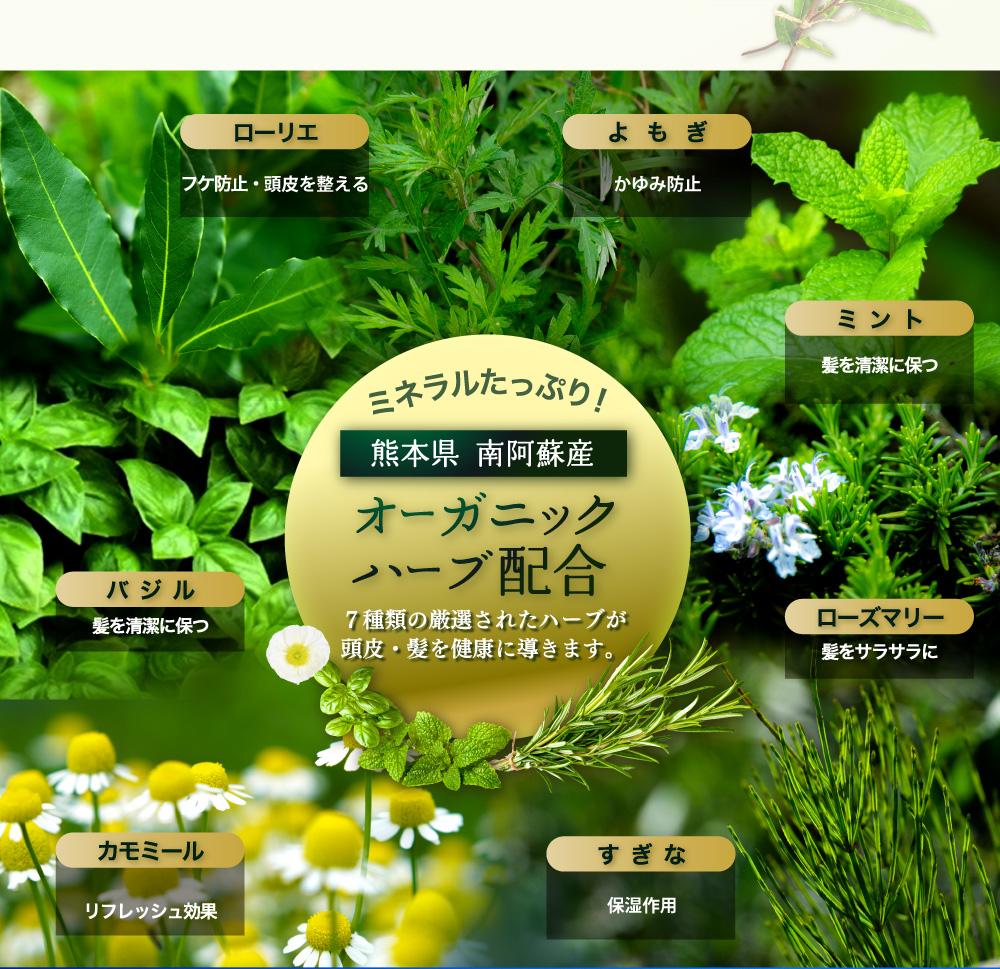 ミネラルたっぷり!熊本県南阿蘇産オーガニックハーブ7種類配合